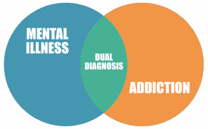 circle graph chart for dual diagnosis